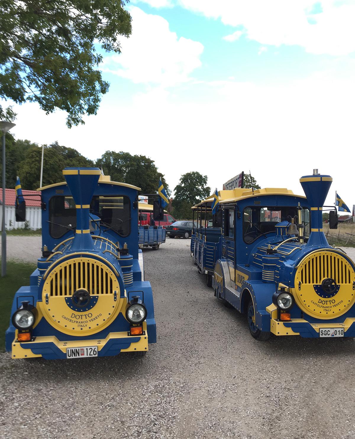 Tåg Visby Blågula Minitåg
